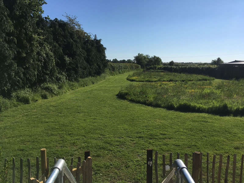 Foxhill Farm, Alderholt, Dorset - Shepherd's Retreat